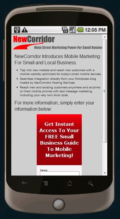 mobile landing page example